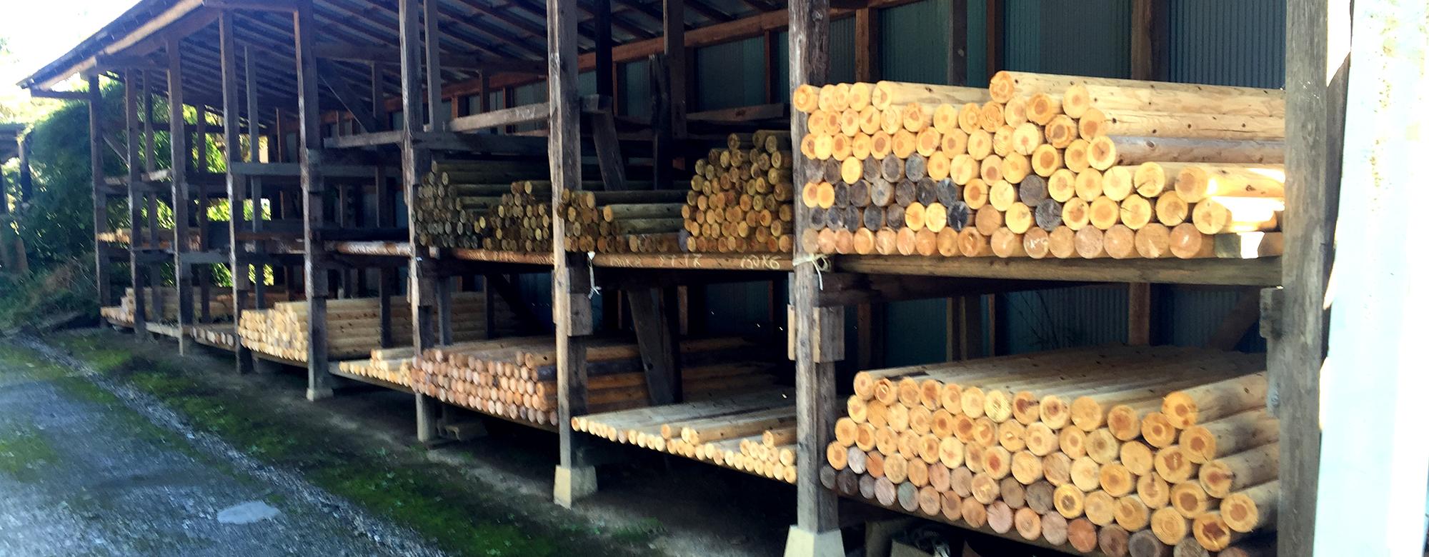 安藤林業研究所